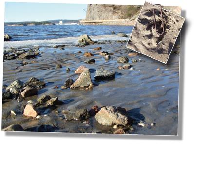 strandbilden.jpg